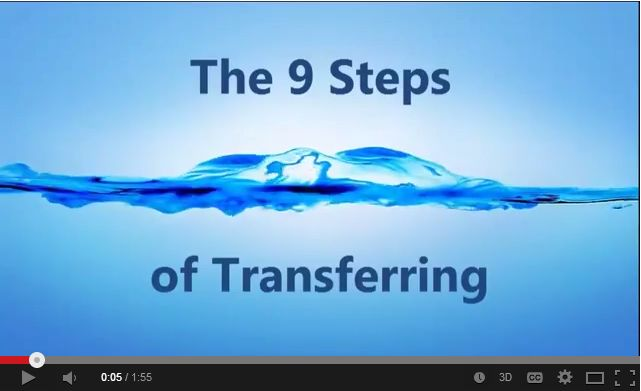 Video 3 9 steps of transfering